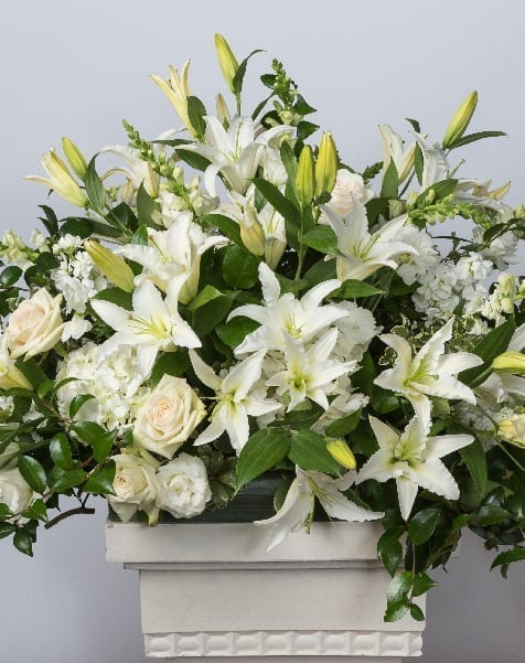 Service Image-Funerals